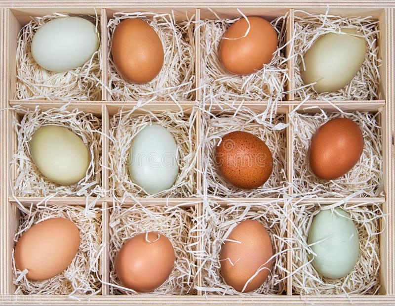 农村美女开超市,鸡蛋卖3毛钱,城里人都嘲笑她,老板却月赚15万