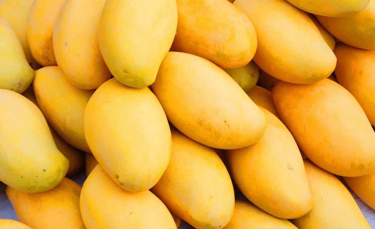 買芒果別只會挑大的,學會這4招,肉厚核薄香又甜,不花冤枉錢