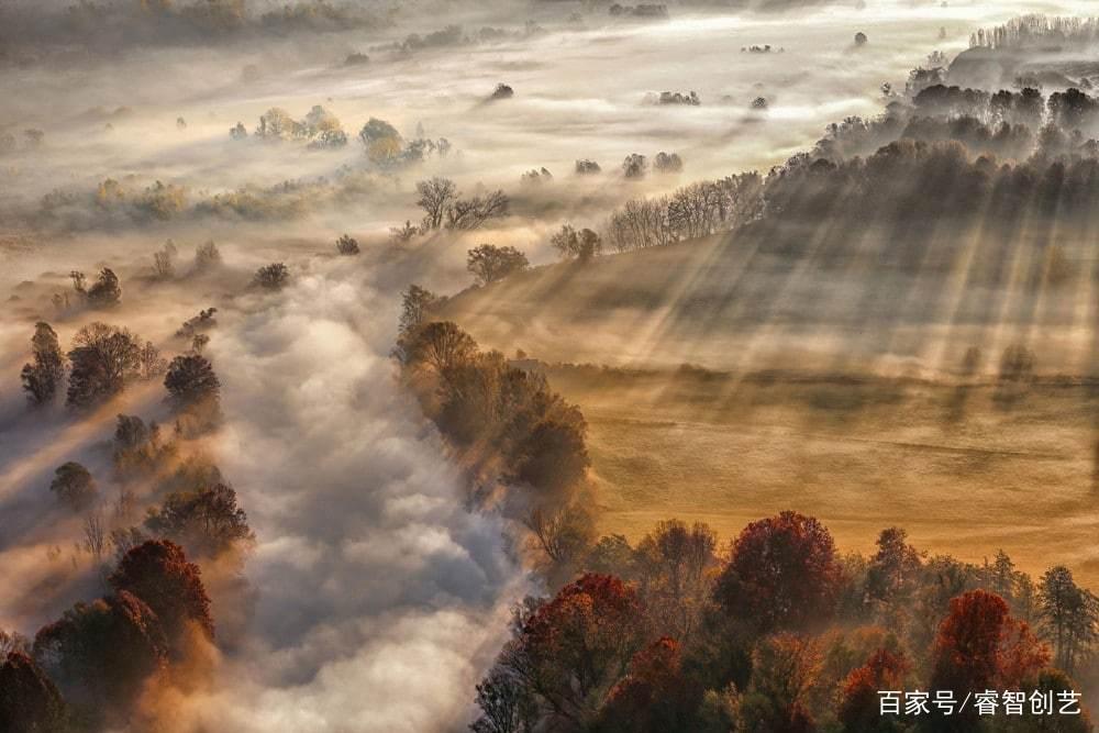 年度气象攝影大赛 :凜冽飞雪、茶山昙气都得奖