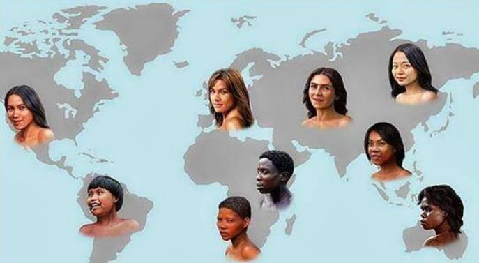 為什麼西方人比東方人多2塊骨頭?
