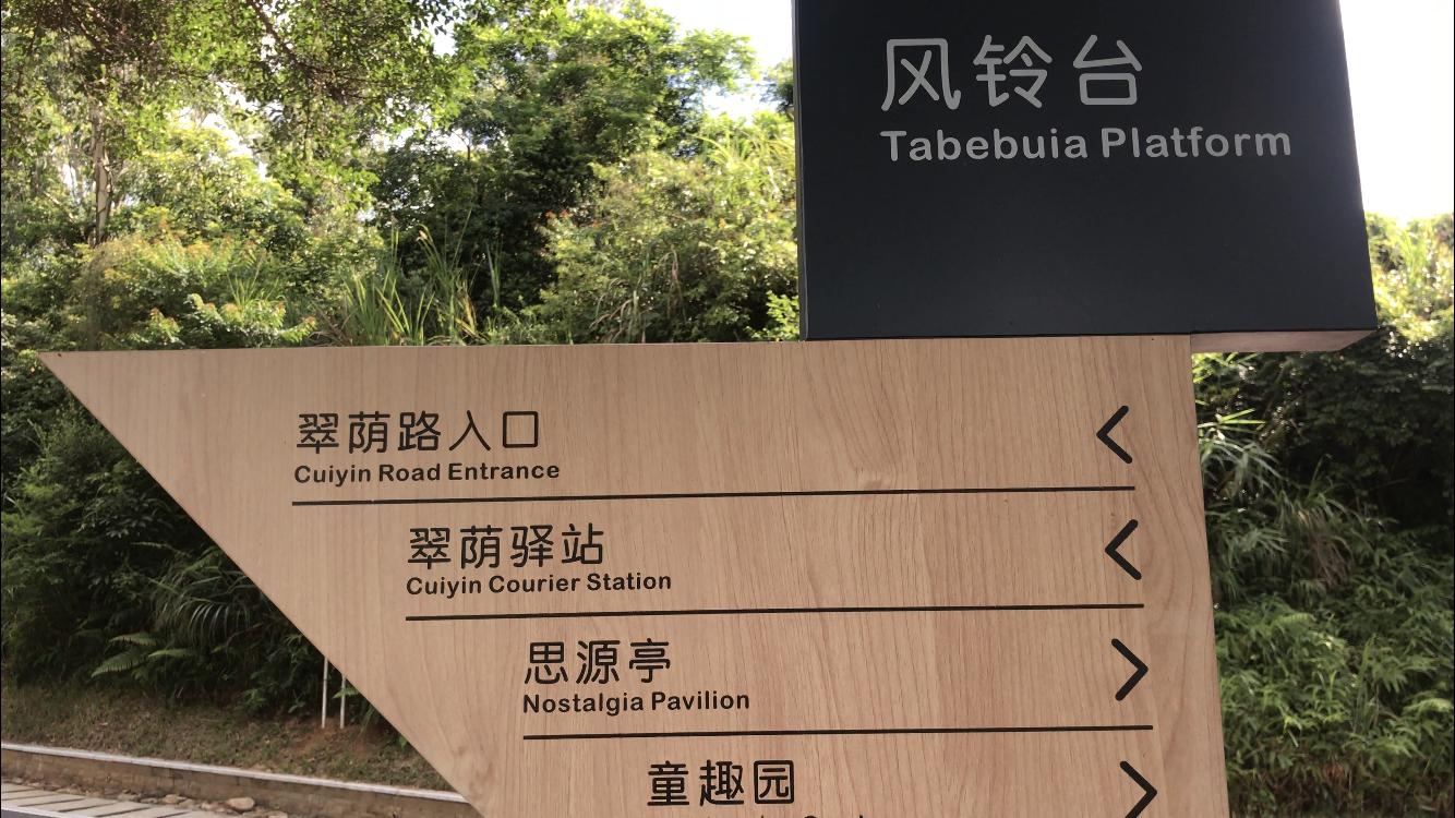 深圳网红打卡地:全长7.07公里绿道,远眺梧桐山,周末游玩玩去处
