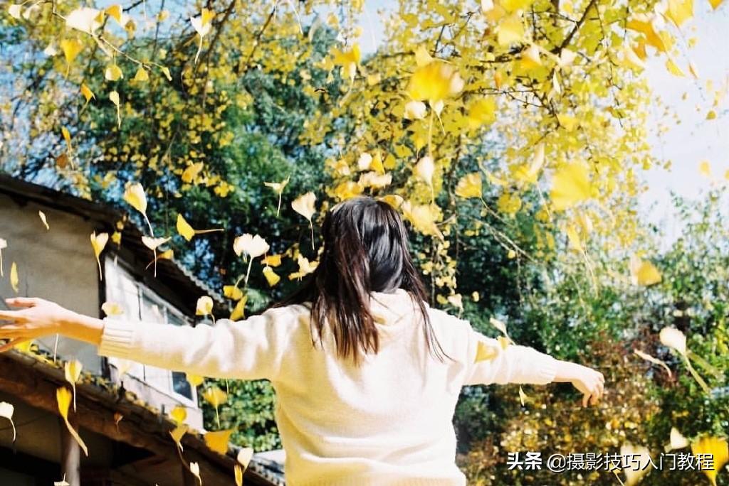 拍照技巧:这是谁拍的秋天,也太好看了吧