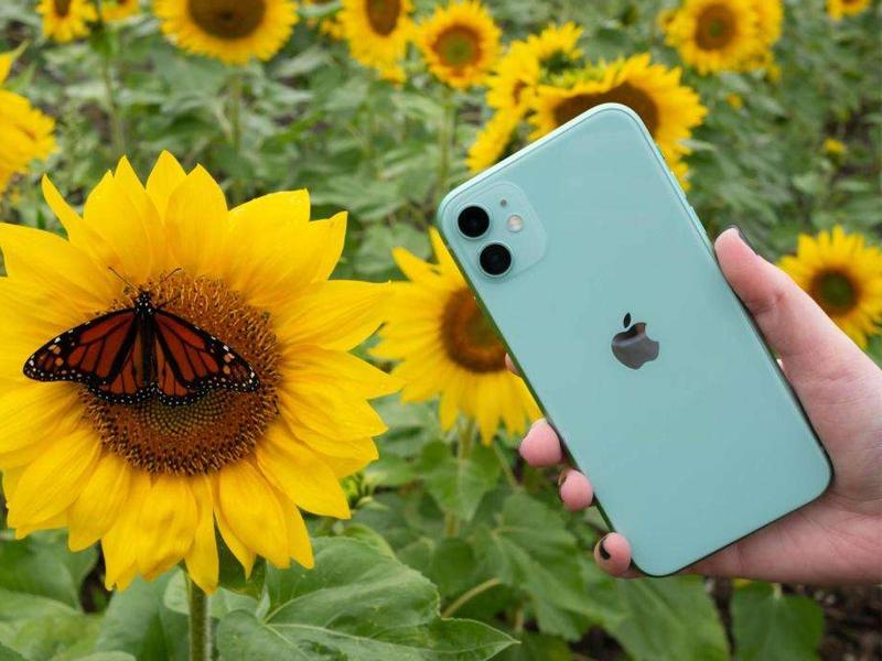 內行都選這三款iPhone,所有頂配廉價,選哪種也不吃大虧