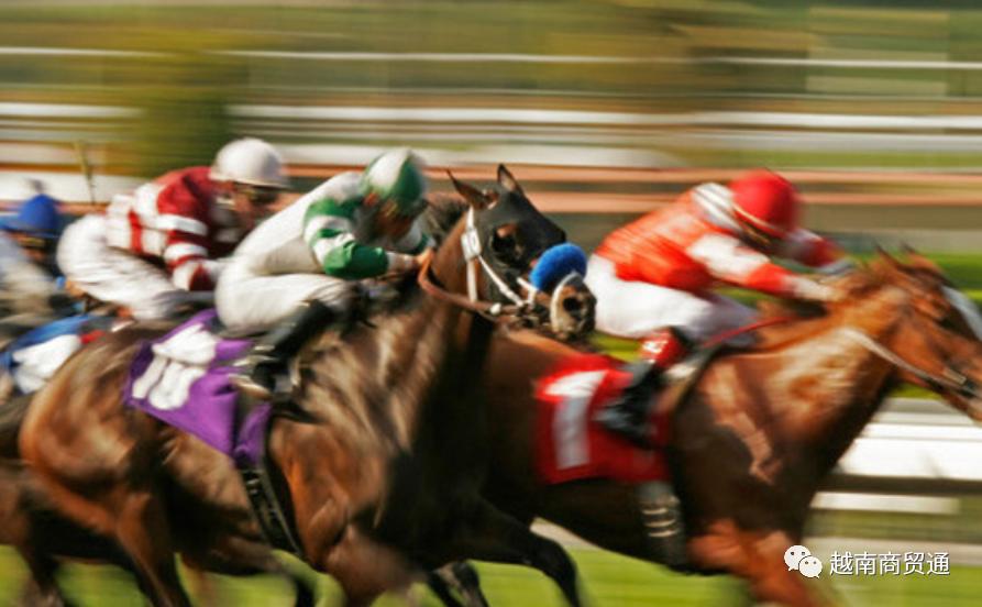 """越南电商企业""""驷马难追"""",哪匹马跑得比较快?"""