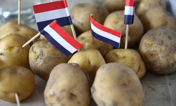 """11种最正宗食品,俗称荷兰版""""老字号"""""""