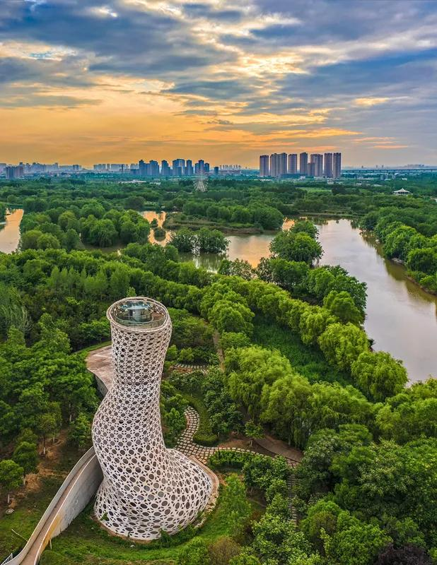2020西安城市观鸟指南 速看