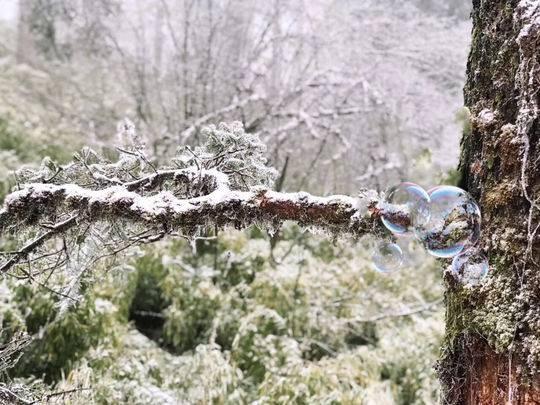 """瓦屋山雪景一天看不够?二次免费入园给你足够时间""""打卡"""""""