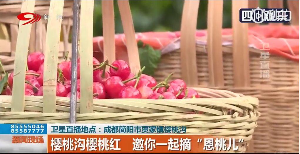 四川一高校学生用粮食作画为祖国庆生! | 新闻早资讯
