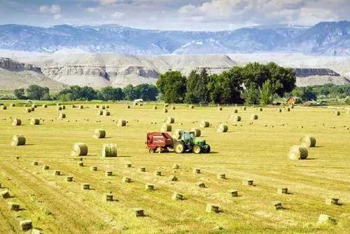 胡月等:如何实现乡村的振兴?——基于美国乡村发展政策演变的经验借鉴