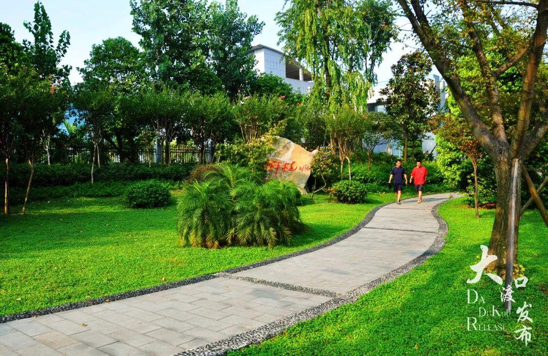 在公园办公,向未来靠拢。大渡口建桥园区喜讯连连,增长迅猛!