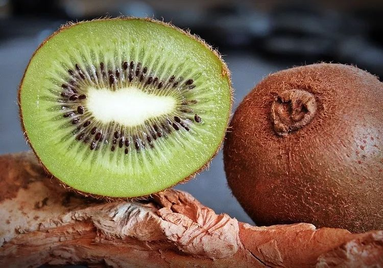 猕猴桃是热性还是凉性?哪些人不可以吃猕猴桃-第2张图片-IT新视野