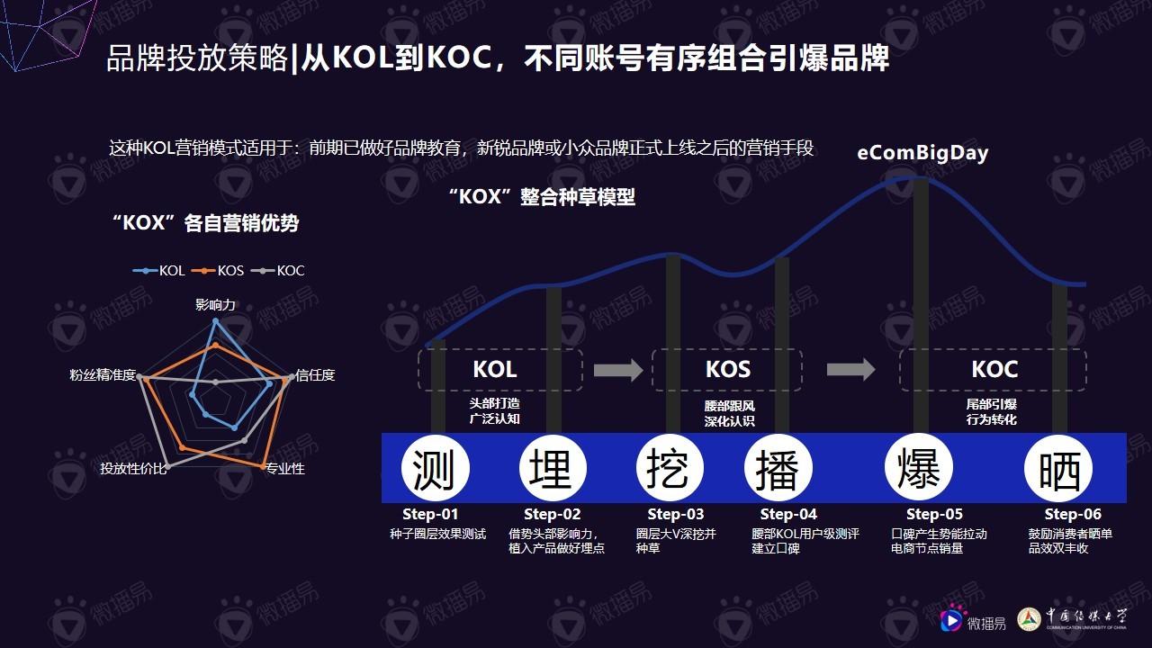 小个体有大势能:2020年中腰部KOL营销发展报告