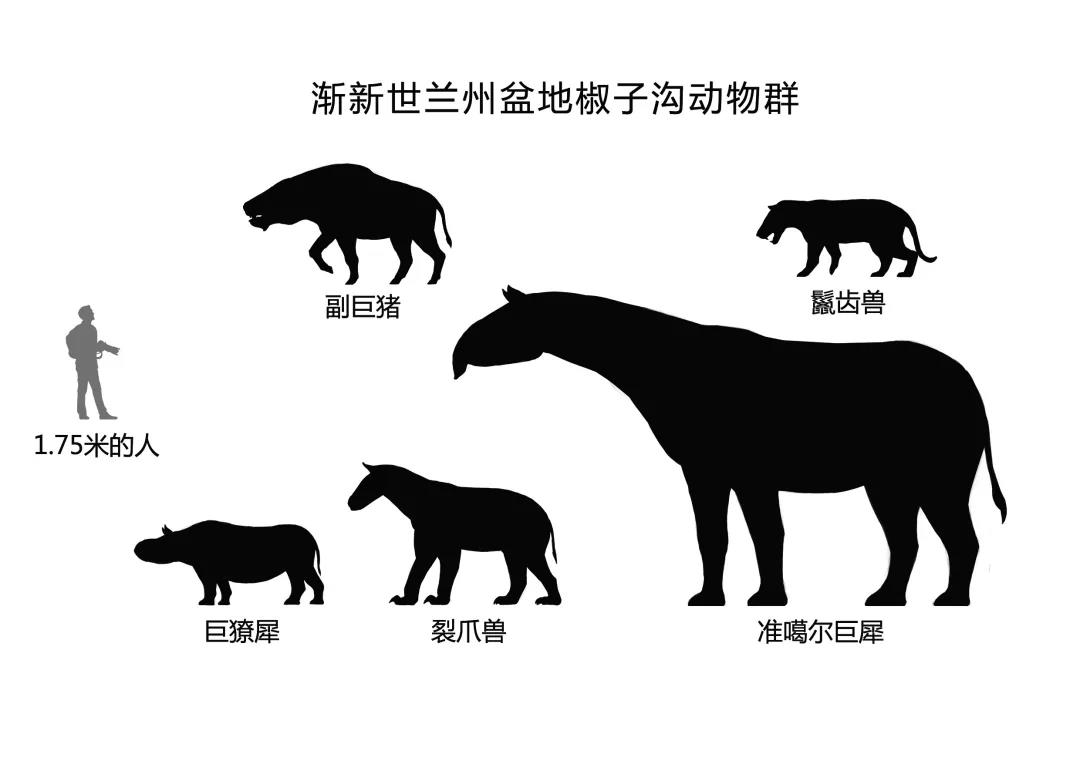 史前大怪物——巨猪