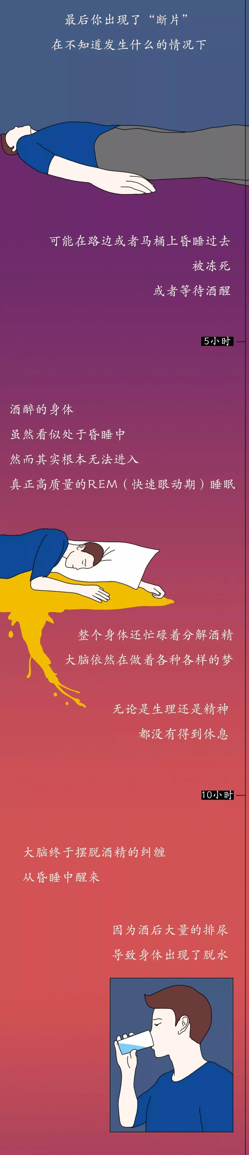 「荐读」一张图看懂酒精进入体内的24小时