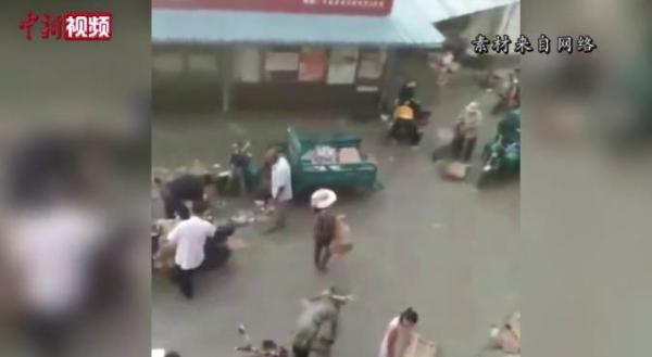 江苏村民哄抢猪肉5人被行拘 7吨猪肉遭哄抢现场曝光