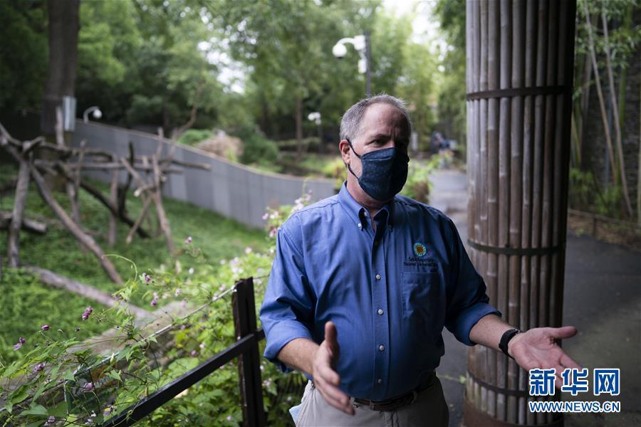 专访:为中美共同保护大熊猫的努力感到骄傲——访美国史密森学会国家动物园和生物保护研究所主管蒙福特