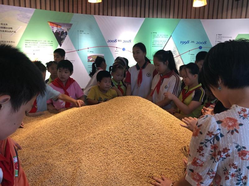 """崇明这里的""""开学第一课"""",用一粒米的故事让孩子们学会节约"""