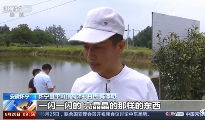 难得一见!安徽怀宁一池塘现大量桃花水母,88岁村民:从未见过