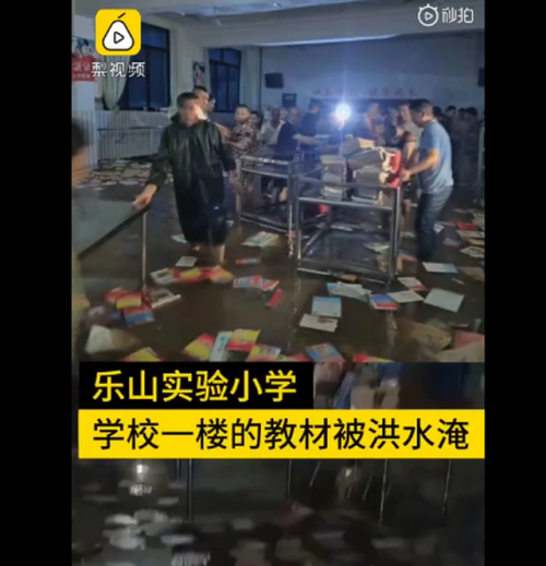 乐山一小学被淹,200名家长接力抢出全校教材 网友:团结力量大