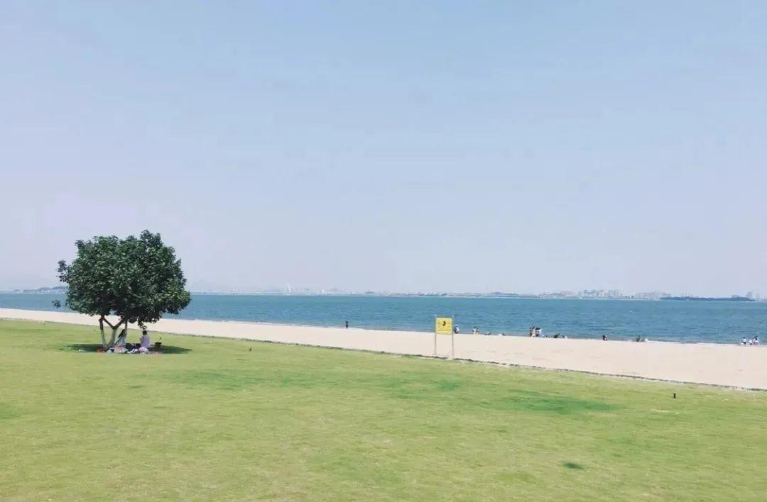 和厦门的大海交个朋友,邂逅一场滨海亲水之旅
