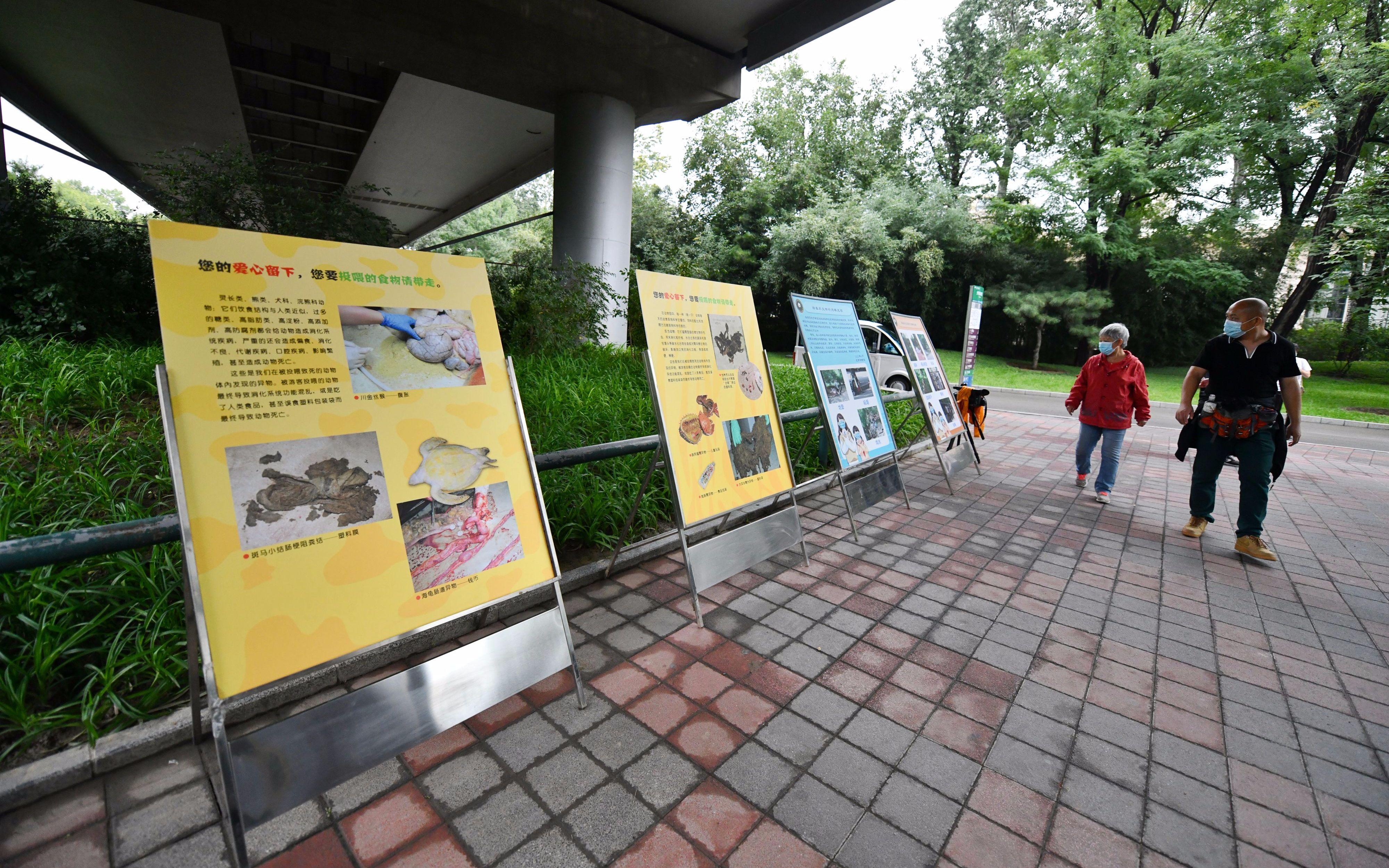 """北京动物园上""""大招"""",随意投喂动物屡劝不改将被禁止入园"""