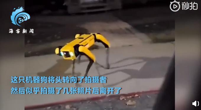 加拿大一机器狗夜晚独自在街头游荡,似乎还拍摄了照片,此事引网友热议