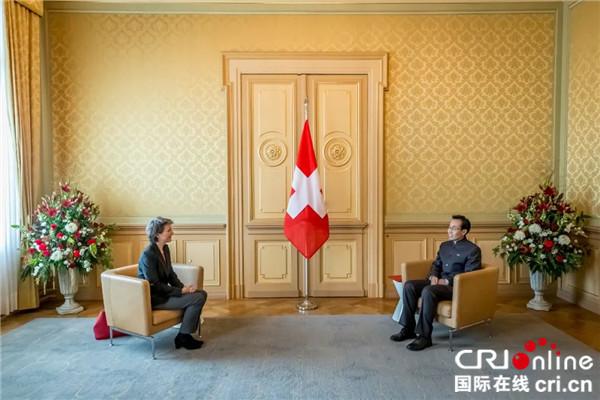 中国驻瑞士大使向瑞士联邦主席递交国书