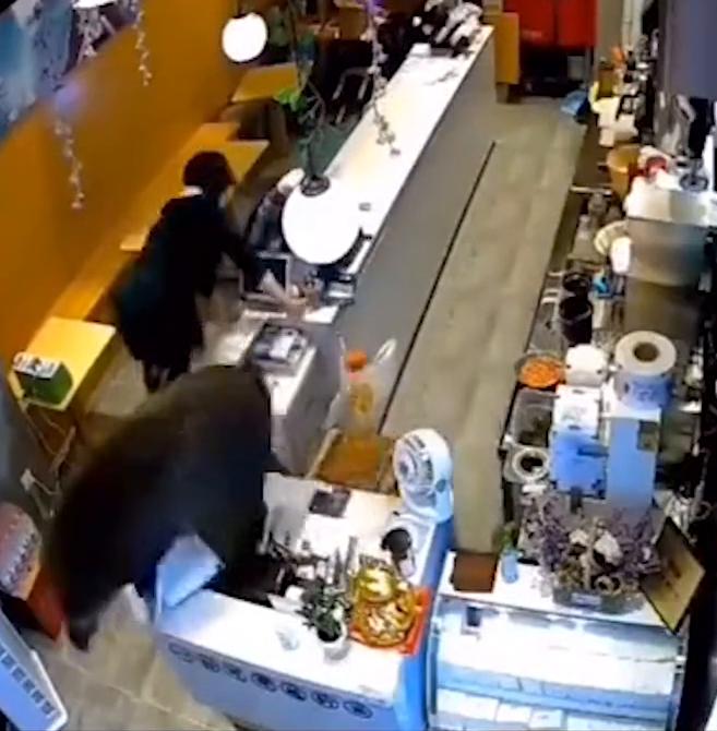 南京一头野猪狂奔进奶茶店乱撞 女店员飞身翻桌躲猪