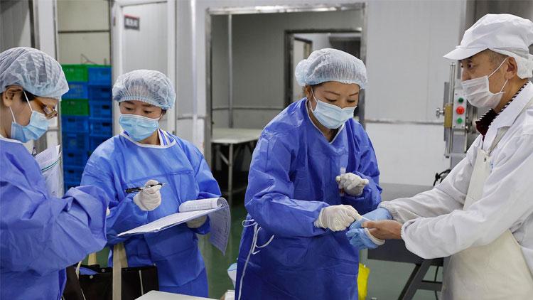 进口冷链食品预防性全面消毒工作方案通知印发