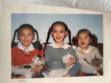 """OMG   刘昊然考编成功!文工团里到底藏了多少""""神奇宝贝""""?"""