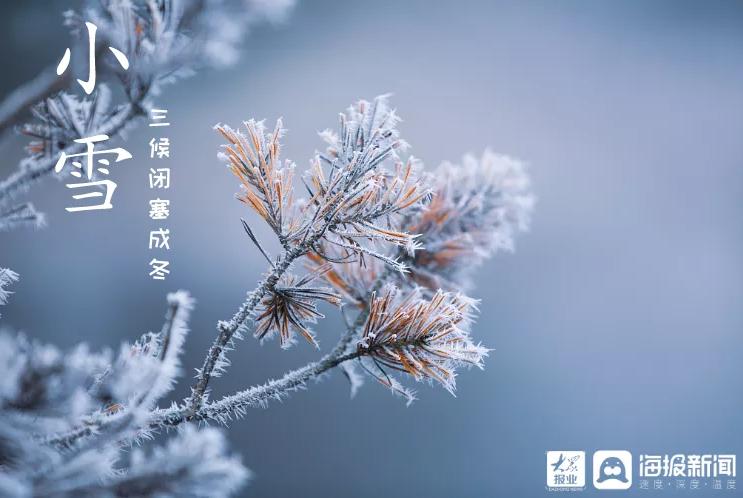 今日小雪丨念一场洁白无瑕,煮一壶诗情画意