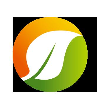 《锂电池报告》从供需角度探讨磷酸铁锂的变化和发展