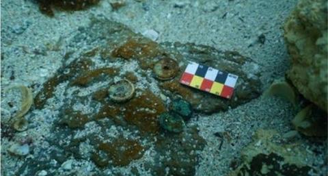 韩媒:韩国济州海域发现中国古商船大型碇石,流行于宋元时期