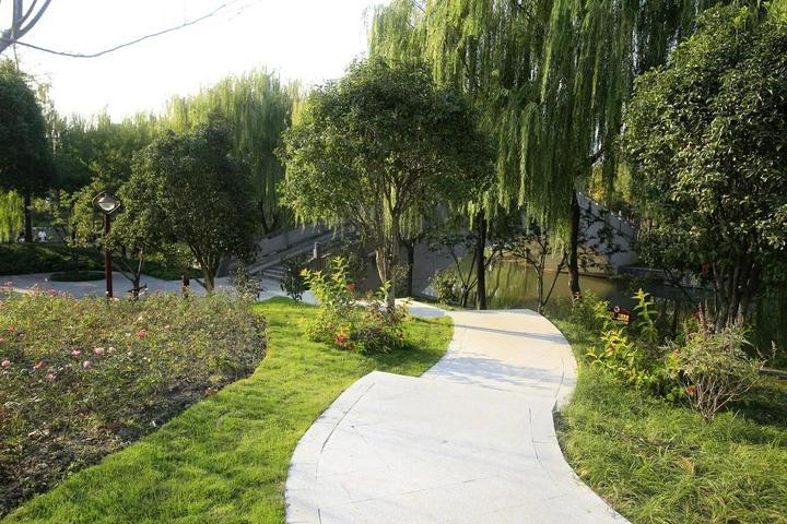 去打卡吧,杭州这条明星河道不仅水清,岸边也变漂亮了