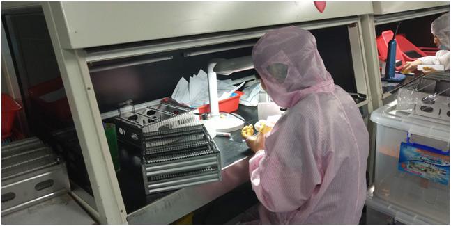 消费电子配件外贸订单激增背后:有机硅暴涨芯片紧供应,疫情下工厂行情分化