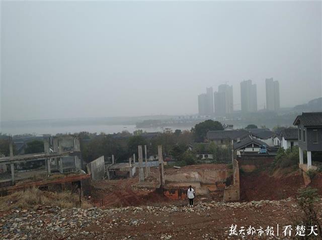 两栋价值超千万元的别墅被拆,开发商涉嫌侵占林地被调查