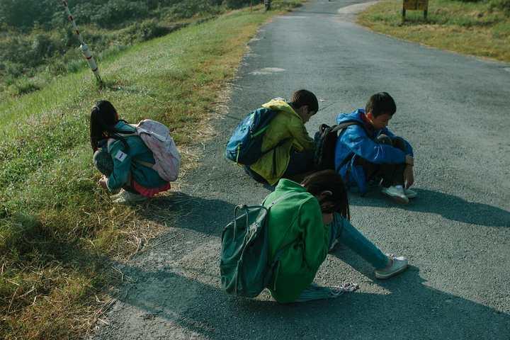 """整个杭州只有12场?""""新远""""排了4场!清华学霸拍的《郊区的鸟》元宵上映"""