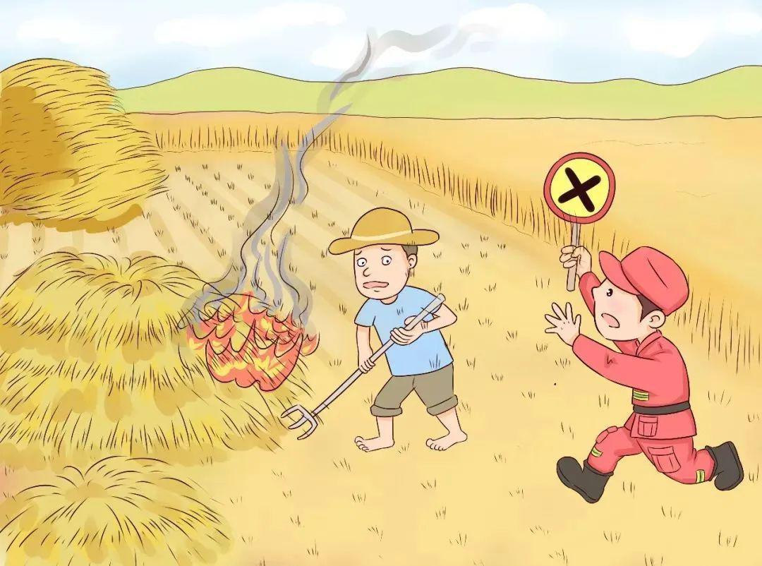 加強森林防火設施刻不容緩