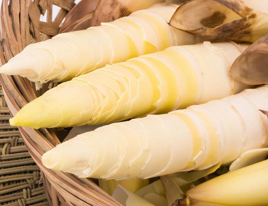 买竹笋,选粗的还是细的? 美食做法 第3张