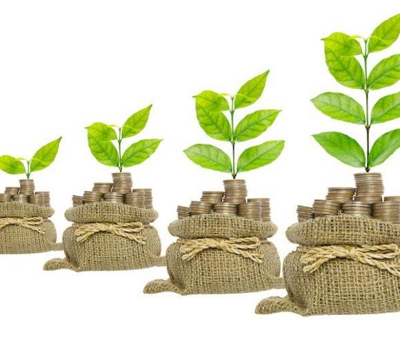 绿色债券迎来爆发期:规模高达8000亿元。两大碳交易市场如何开放?