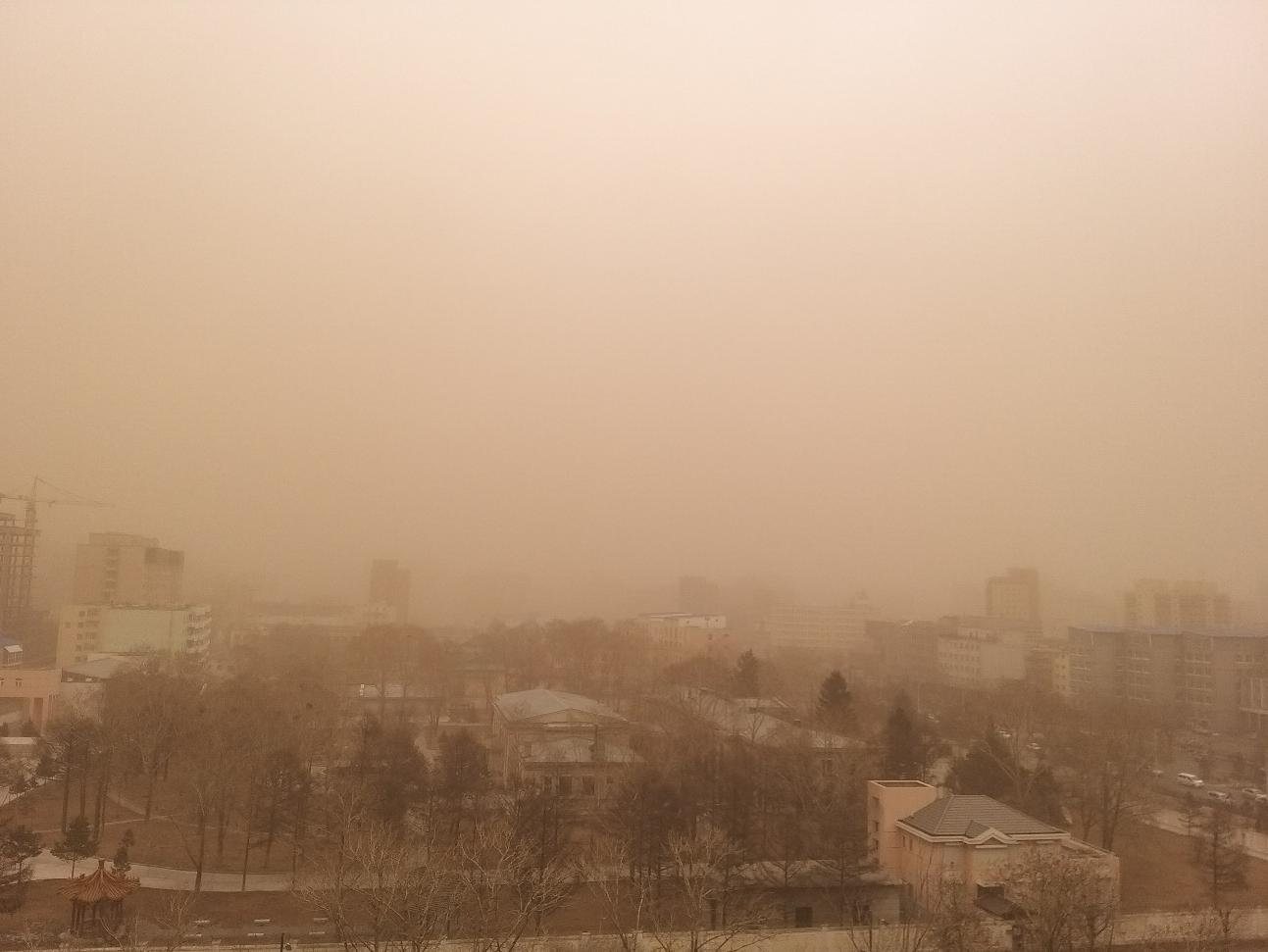 蒙古国中戈壁省近期强沙尘暴天气致16万头牲畜死