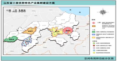 禹城纳入山东沿黄小麦产业集群
