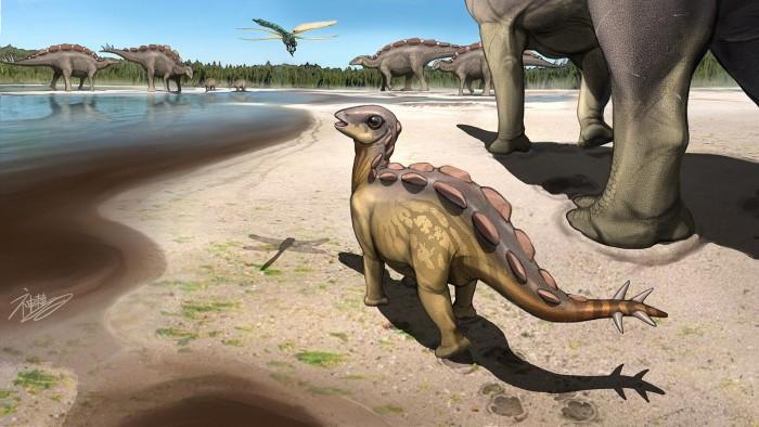 古生物学家发现一个跟猫一样大小的恐龙足迹-第1张图片-IT新视野