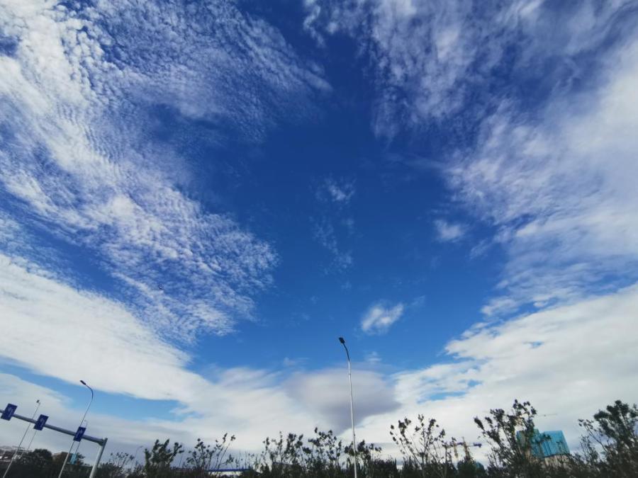 青岛:云层铺成鱼鳞状清风吹来好舒畅