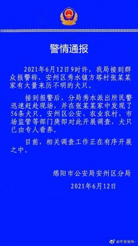 四川绵阳一村民家中发现56只不明来历犬只,多部门开展调查