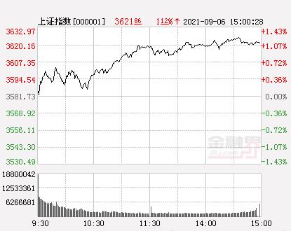 收评:创业板指暴涨4.06%终结7连阴,白马股底部反弹,通策医疗涨停