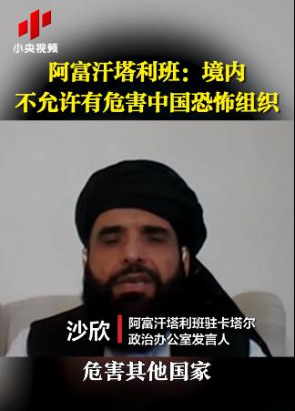 塔利班:境内不允许有危害中国的恐怖组织