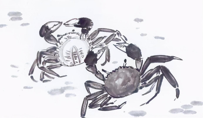 """橙蟹肥时霜满天,也莫忘螃蟹""""江湖好是横行处,草浅泥污过一生"""""""