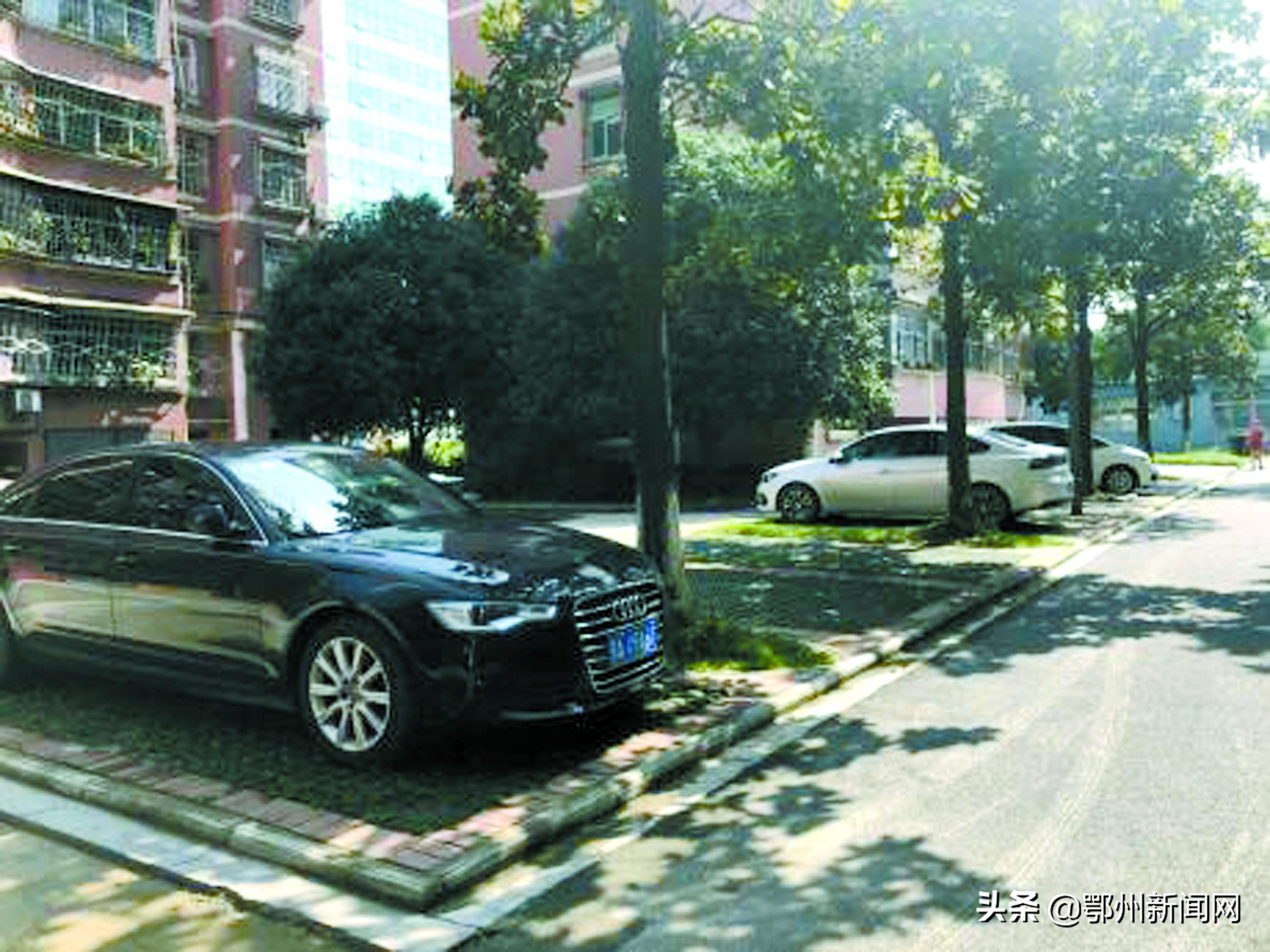 鄂州建设4000个生态停车位,有效缓解居民停车难的问题