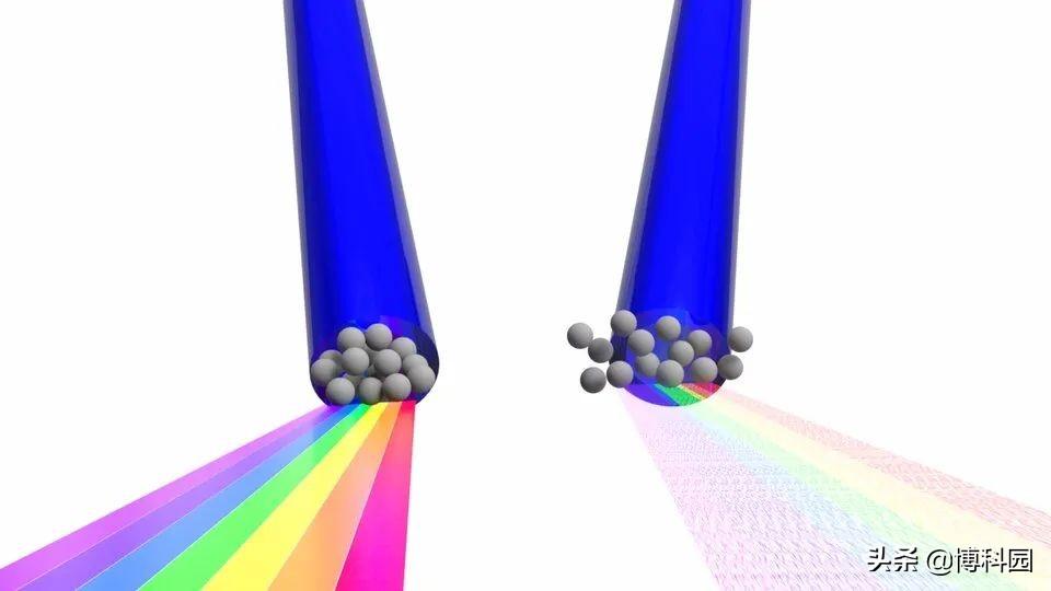 一秒相当于310亿年,能否看到光合作用中,分子化学反应的画面?